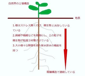 土壌自然.jpg